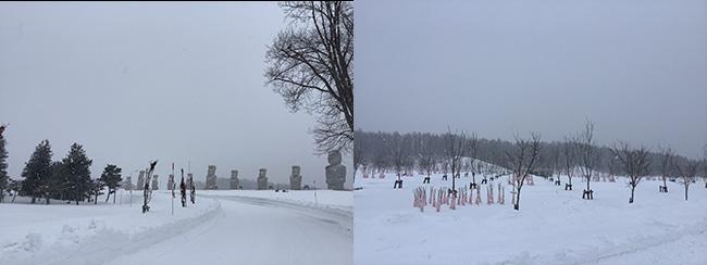 冬の真駒内滝野霊園